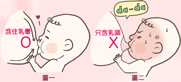 新生兒含乳姿勢正確嗎?